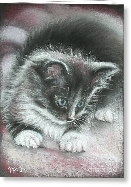 Kitten Greeting Card by Valentina Vassilieva