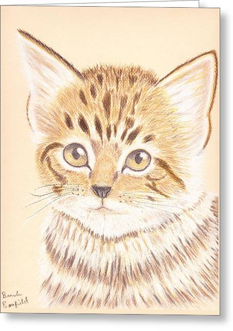Kitty Greeting Card by Brenda Bonfield