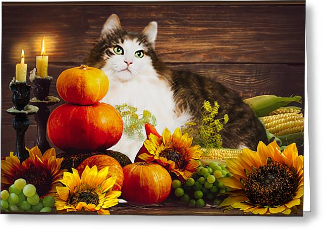 Kitty's Harvest Greeting Card