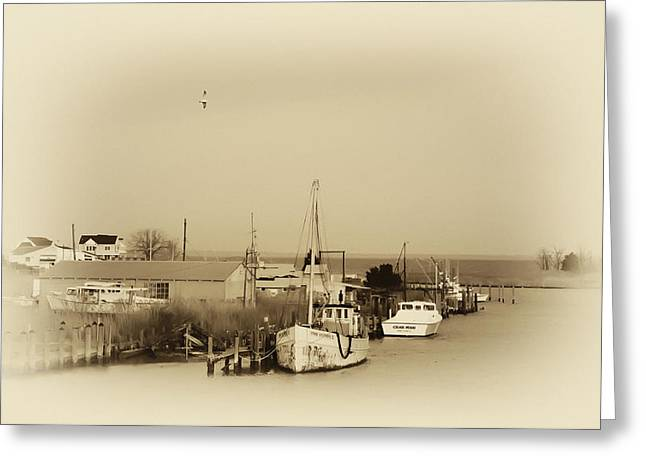 Knapps Narrows Tilghman Island Greeting Card by Bill Cannon