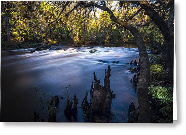 Knees In The Rapids Greeting Card by Marvin Spates