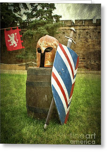 Knight Vision Greeting Card by Terri Waters