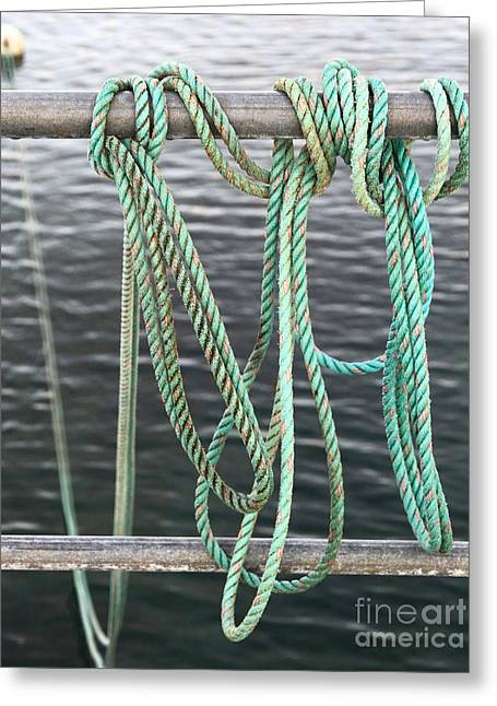 Greeting Card featuring the photograph Knot Of My Warf II by Stephen Mitchell