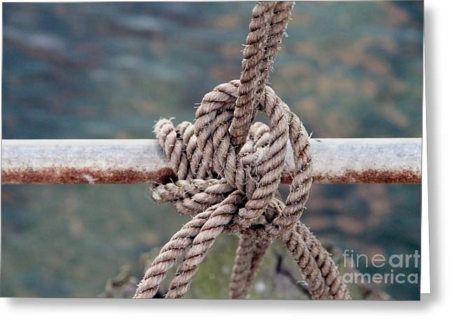 Greeting Card featuring the photograph Knot Of My Warf by Stephen Mitchell