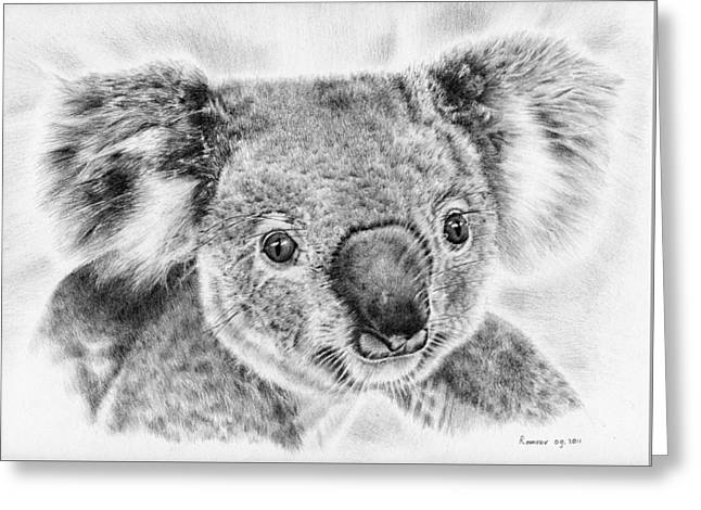 Koala Newport Bridge Gloria Greeting Card