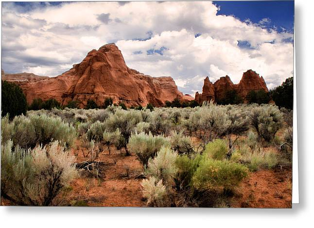 Kodachrome Sage Greeting Card by Lana Trussell