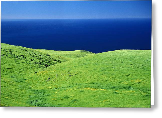 Kohala Mountain Rd Greeting Card by Peter French - Printscapes