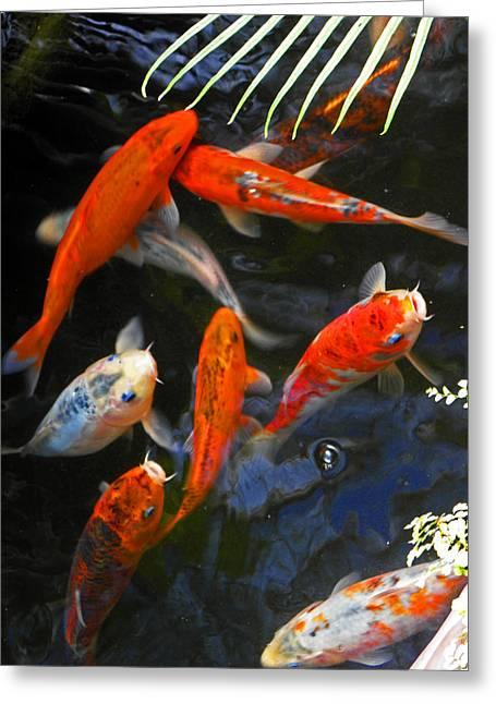 Koi Fish II Greeting Card by Elizabeth Hoskinson
