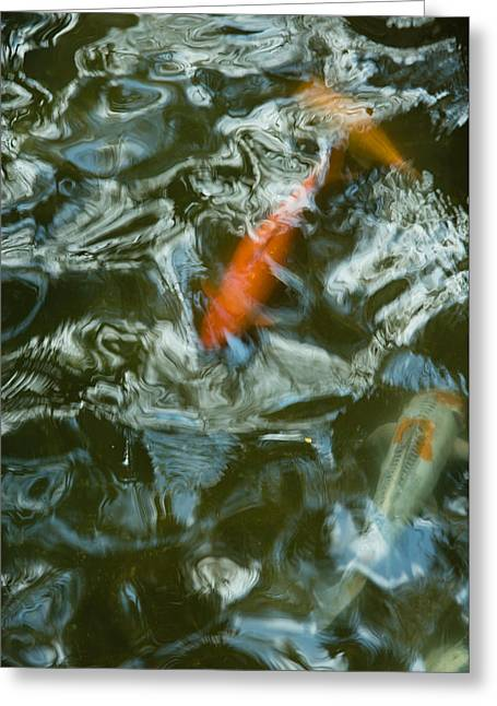 Koi I Greeting Card