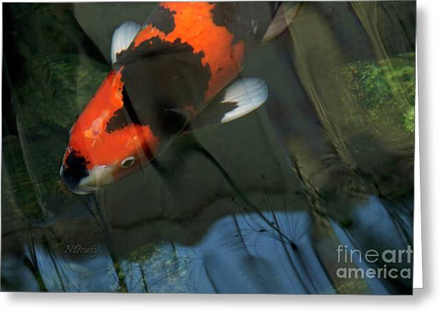 Koi Reflection Greeting Card