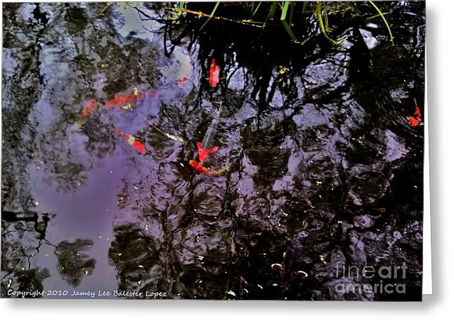 Koi Reflections Evening Greeting Card by Jamey Balester