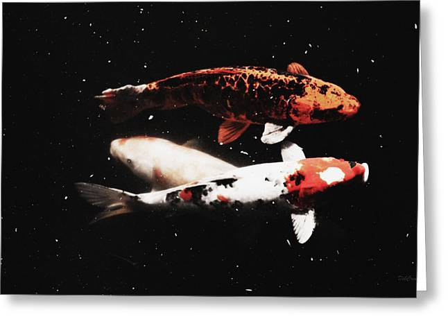 Greeting Card featuring the photograph Koi Trio  by Deborah  Crew-Johnson