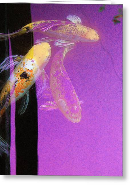 Koi Vi Magenta Greeting Card