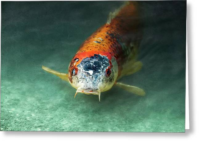 Koi Greeting Card by Wim Lanclus