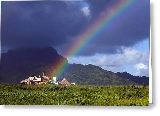Koloa Mill Greeting Card by Nick Galante