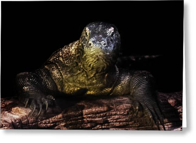 Komodo Dragon Greeting Card by Martin Newman
