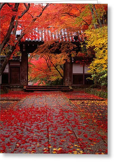 Komyoji Temple  Kyoto Japan Greeting Card by Panoramic Images