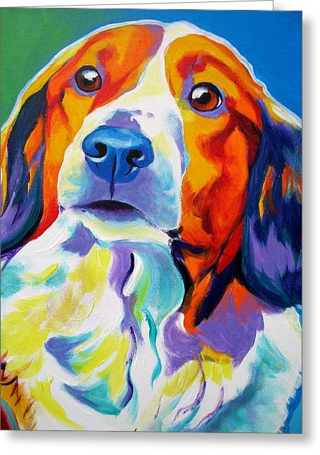 Spaniel Greeting Cards - Kooiker - Dakota Greeting Card by Alicia VanNoy Call