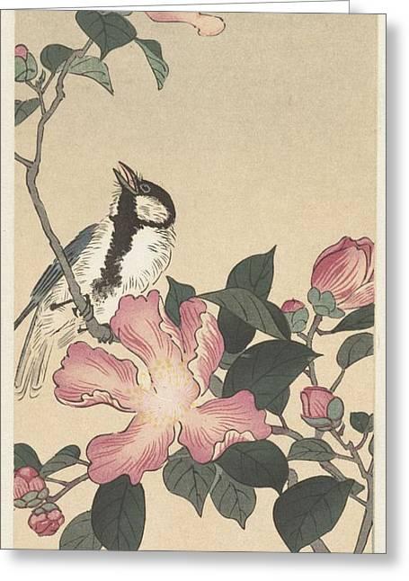 Koolmees Op Tak Met Roze Bloemen Greeting Card by Anonymous