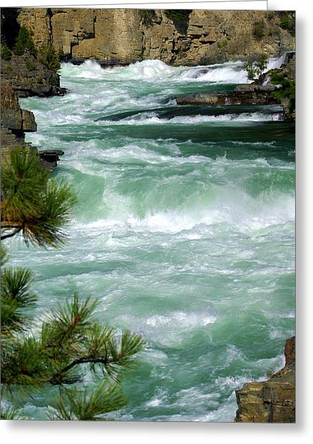 Kootenai River Greeting Card