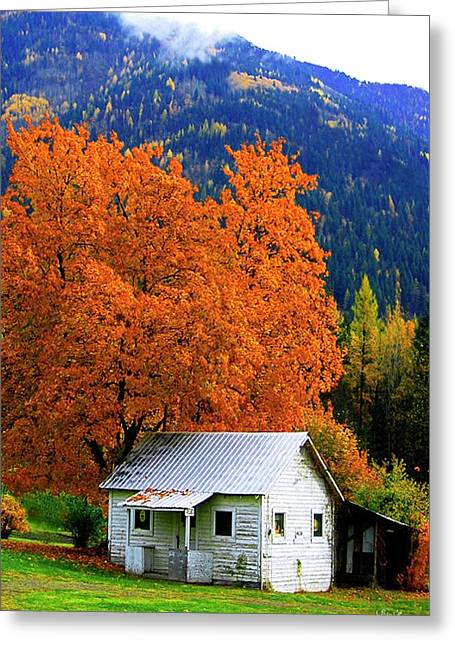 Kootenay Autumn Shed Greeting Card