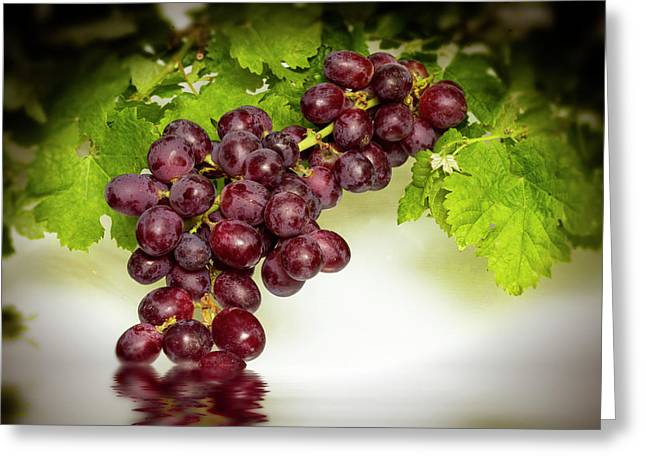 Krissy Gold Grapes Greeting Card
