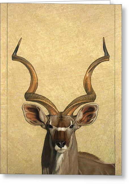 African Greeting Cards - Kudu Greeting Card by James W Johnson
