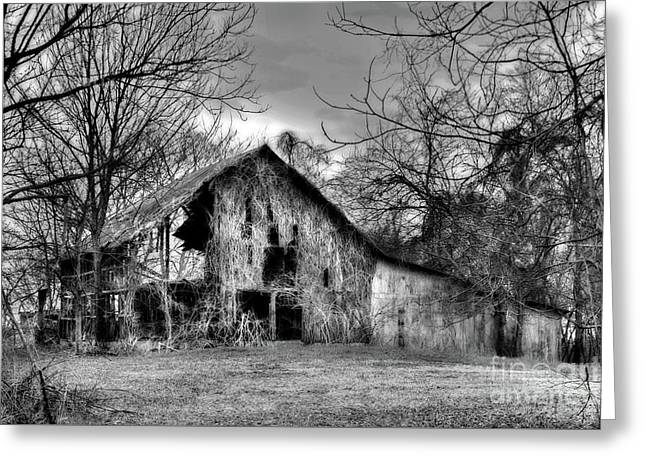 Kudzu Covered Barn In The Mississippi Delta Greeting Card