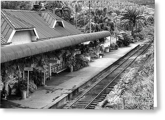 Kuranda Station 01 Greeting Card by Rick Piper Photography