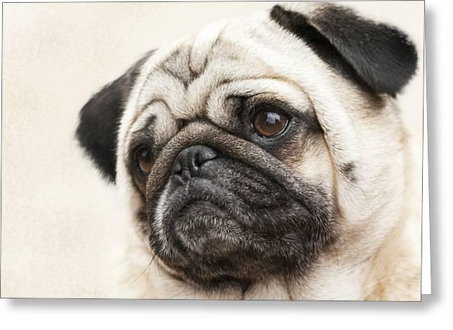 L-o-l-a Lola The Pug Greeting Card