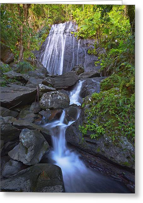 La Coca Falls Greeting Card by Brian Knott - Forget Me Knott Photography