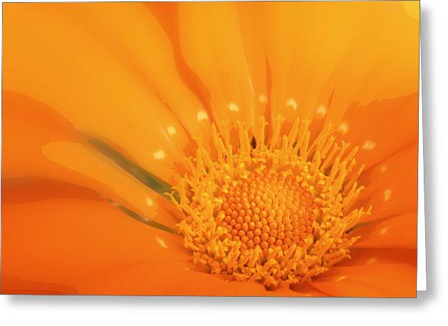 La Fleur D'orange Greeting Card