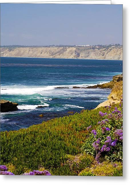 La Jolla Cliffs Greeting Card by Keith Ducker