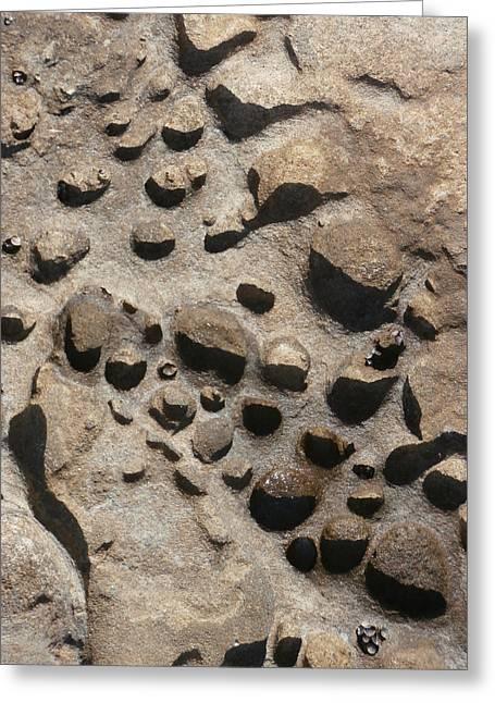 La Jolla Rocks Greeting Card by Karyn Robinson