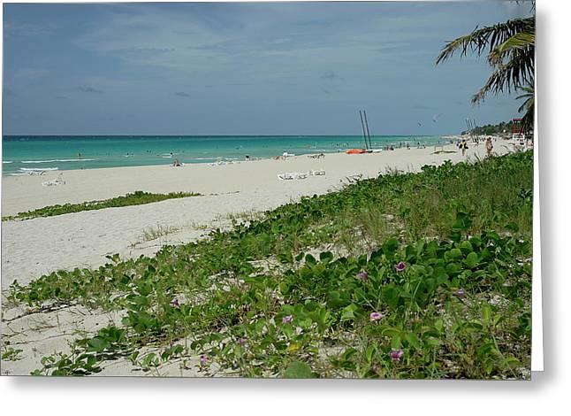 La Playa Mas Hermosa Greeting Card