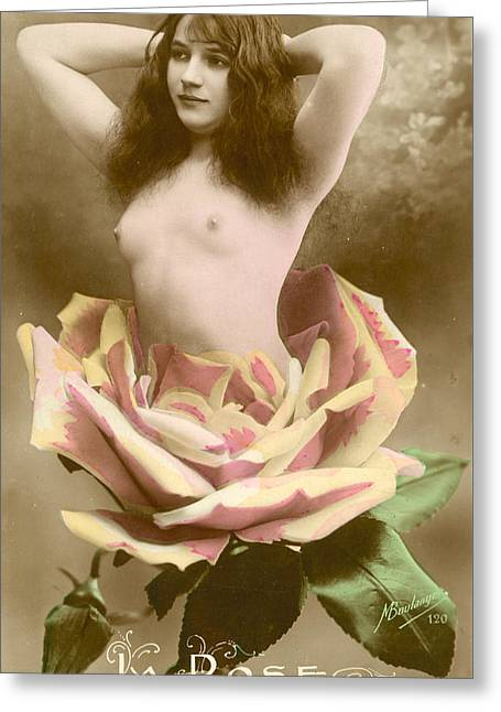 La Rose Greeting Card by French School