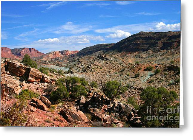 La Sal Canyon Arches National Park Greeting Card