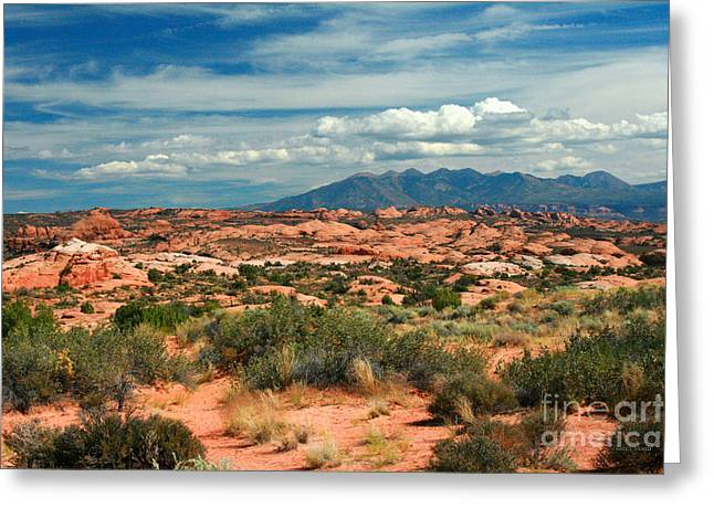 La Sal Mountains, Moab Utah, Usa Greeting Card