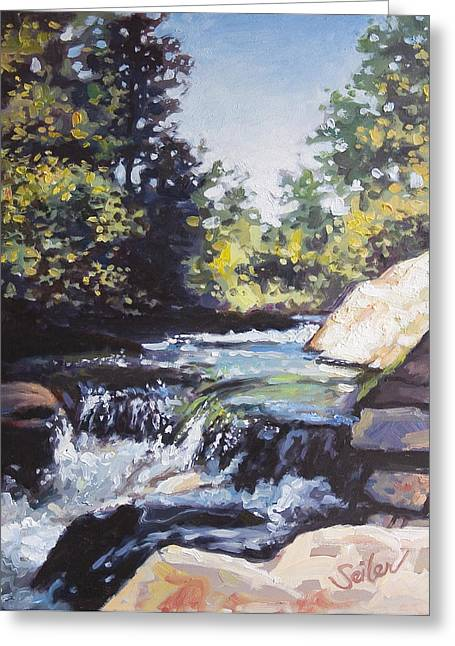 La Salle Falls Greeting Card by Larry Seiler