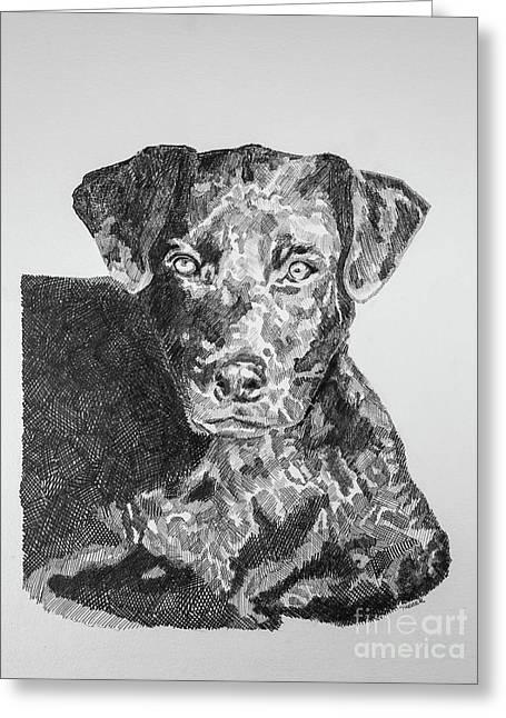 Labrador Portrait Greeting Card by Robert Yaeger