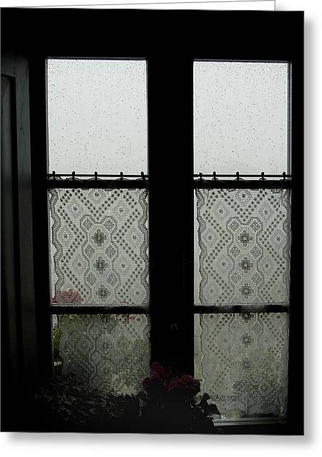 Lace Curtains Adorn The Window Greeting Card by Todd Gipstein