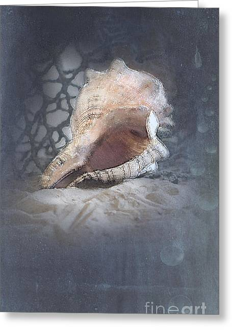 Lace Murex Sea Shell In Blue Greeting Card
