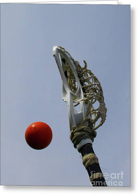 Lacrosse Stick And Ball Greeting Card