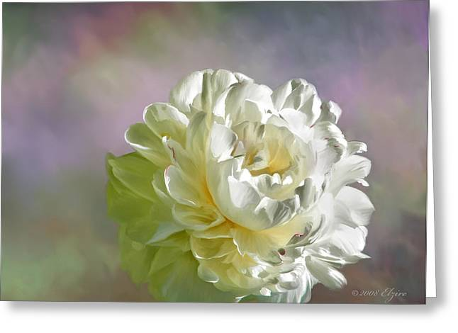 Lacy Greeting Card by Elzire S