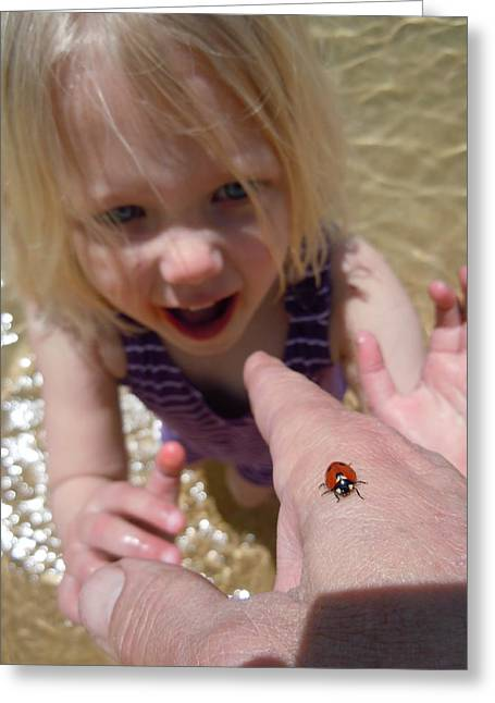 Greeting Card featuring the photograph Lady Bug  by Dan Whittemore