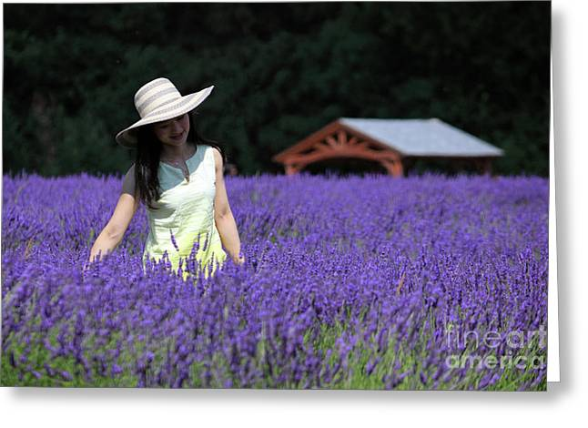 Lady In Lavender Greeting Card