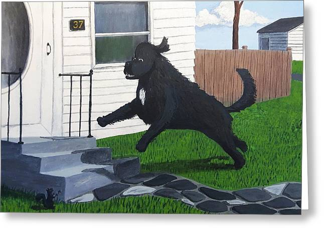 Lady Leaps The Small Front Stairs Greeting Card