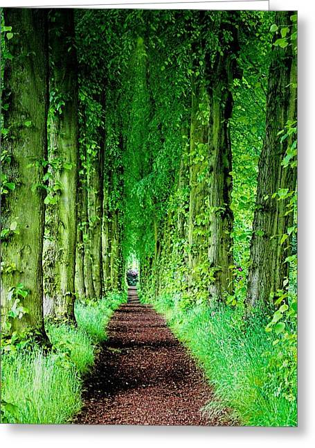 Lady Lucy's Walk Greeting Card