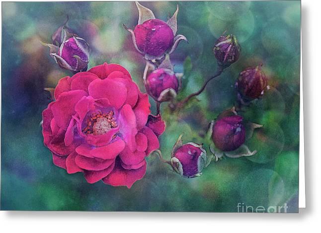 Lady Rose Greeting Card by Agnieszka Mlicka