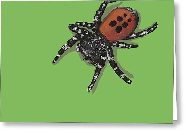 Ladybird Spider Greeting Card